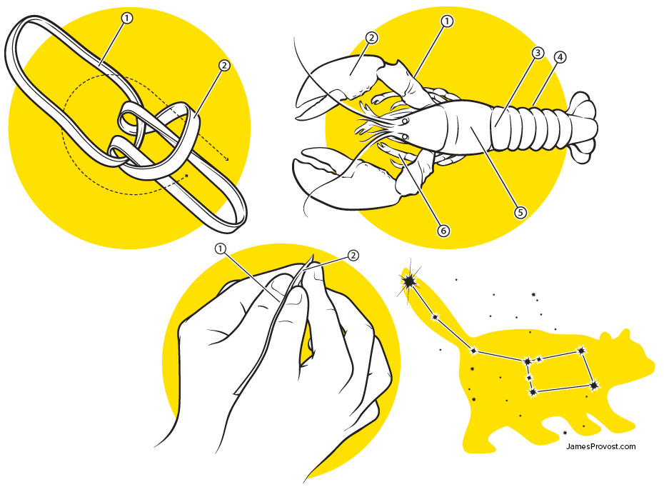 How-To Illustrations